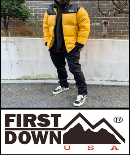 2020 F/W FIRSTDOWN JAPAN PASSING SHEEP LEATHER + DUCKDOWN [International]
